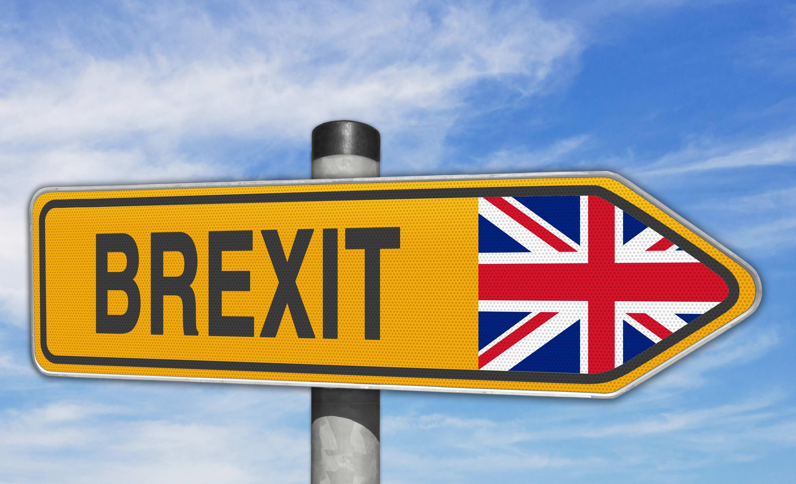 Hlasování o jednání s Británií – celní unie