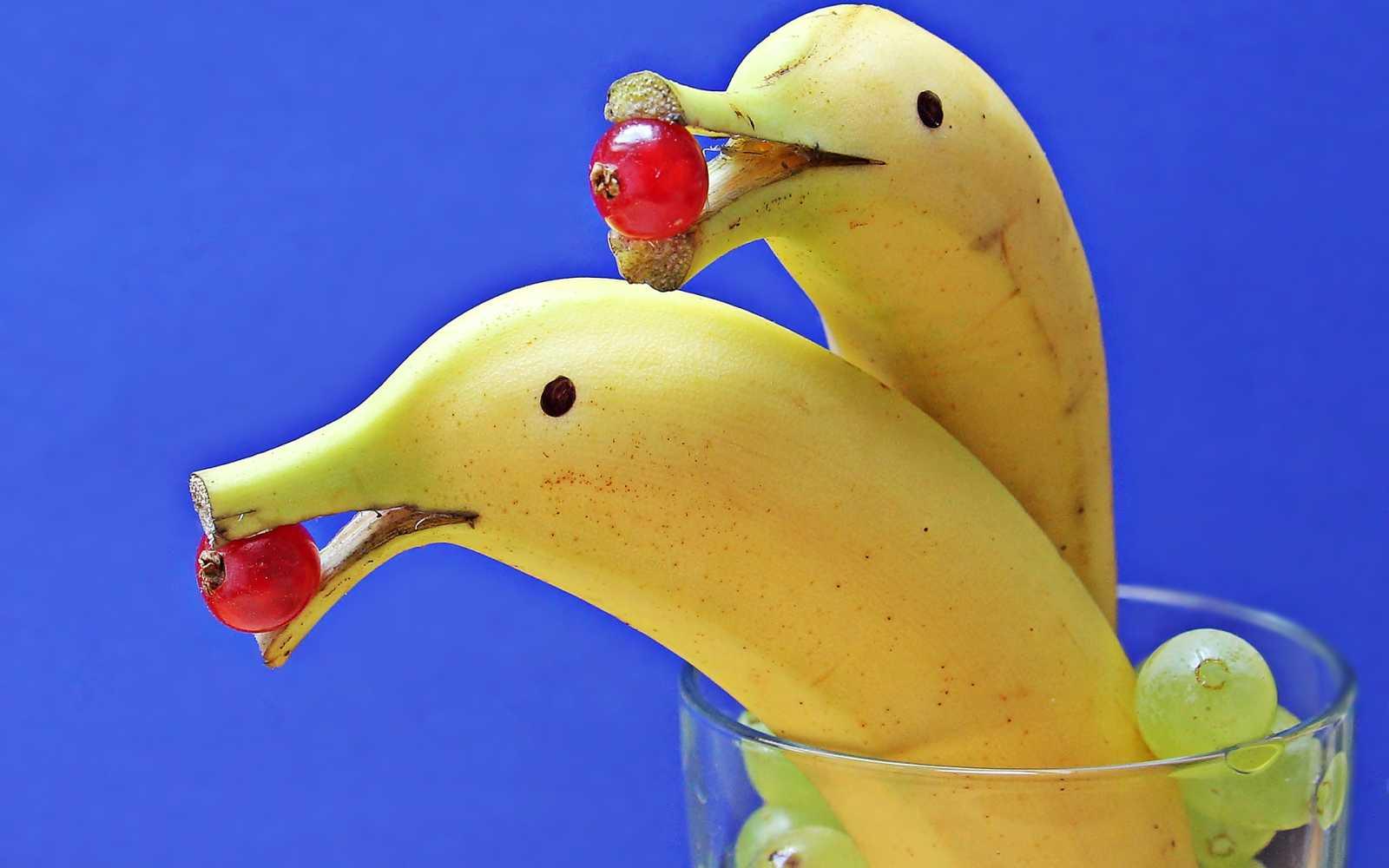 delfin-bananas-pixabay